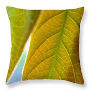 Interesting Leaves - Digital Painting Effect Throw Pillow