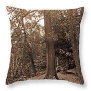 Interesting Tree Throw Pillow