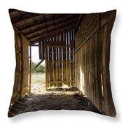 Interiors Throw Pillow