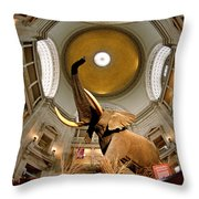 Interiors Of A Museum, National Museum Throw Pillow