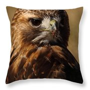 Red Tailed Hawk Portrait Throw Pillow