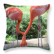 Intertwined Flamingoes Throw Pillow
