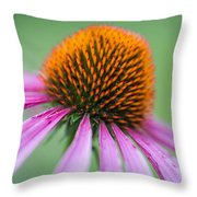 Intimate View Throw Pillow