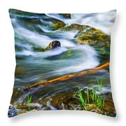 Intimate With River Throw Pillow