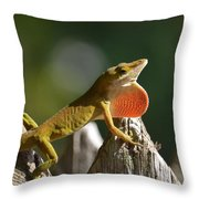 Intimidated Anole Throw Pillow