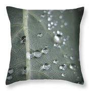 Into Every Life A Little Rain Must Fall Throw Pillow