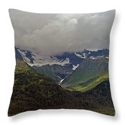 Into It Throw Pillow
