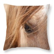 Into My Soul Throw Pillow