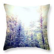 We Drifted Into Silence And Never Came Back  Throw Pillow
