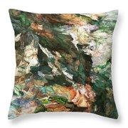 Into The Canyon Throw Pillow