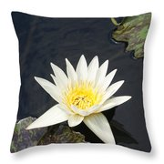 Into The Center...   # Throw Pillow