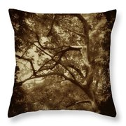 Into The Dark Wood Throw Pillow
