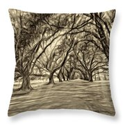 Into The Deep South - Paint 2 Sepia Throw Pillow