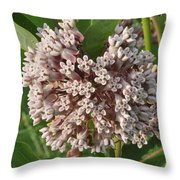 Into The Heart Of A Milkweed Flower Throw Pillow