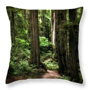 Into The Magical Forest Throw Pillow