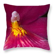 Into The Orchid Throw Pillow