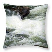 Into The Rapids Throw Pillow