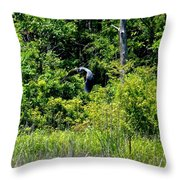 Into The Sunlight He Rises Throw Pillow