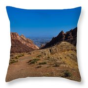 Into The Valley Throw Pillow