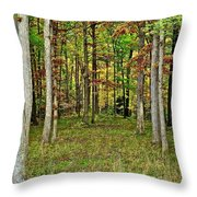 Into The Void Throw Pillow by Frozen in Time Fine Art Photography