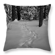 Into The Woods Pisgah Forest Black And White Throw Pillow