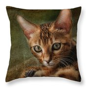 Introducing Leo Throw Pillow