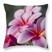 intoxicated by Love Throw Pillow