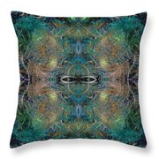 Intrigue Of Mystery Four Of Four Throw Pillow by Betsy Knapp