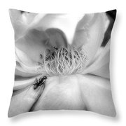 Intrigue Rose In Black And White Throw Pillow