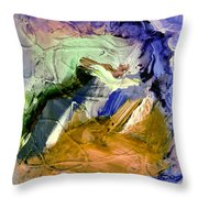 Inundation Zone Throw Pillow