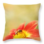 Inviting Throw Pillow by Beve Brown-Clark Photography