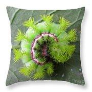 Io Caterpillar Throw Pillow