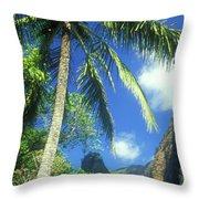 Io Valley Palm And Needle Maui Hawaii Throw Pillow
