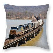 Iona Island Throw Pillow