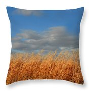 Iowa Amber Throw Pillow