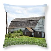Iowa Barn 7254 Throw Pillow