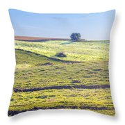 Iowa Farm Land #1 Throw Pillow