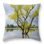 Iowa Flood Plains Throw Pillow