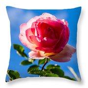 iPhone Case - Pink Rose Throw Pillow