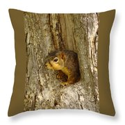 iPhone Squirrel In A Hole Throw Pillow