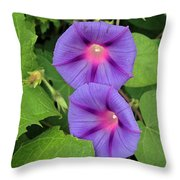 Ipomea Acuminata Morning Glory Throw Pillow