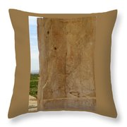 Iran Cyrus The Great Throw Pillow