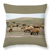 Iran Sheep Throw Pillow