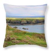 Ireland Coastline Panorama Throw Pillow