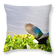 Iridescent Color Of Purple Gallinule Throw Pillow