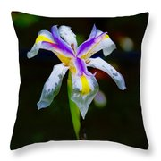Iris 2012 Throw Pillow