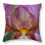 Iris 29 Throw Pillow