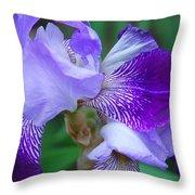 Iris 30 Throw Pillow