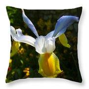 Iris 7 Throw Pillow