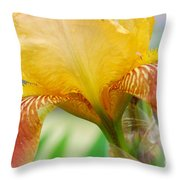 Iris 9 Throw Pillow